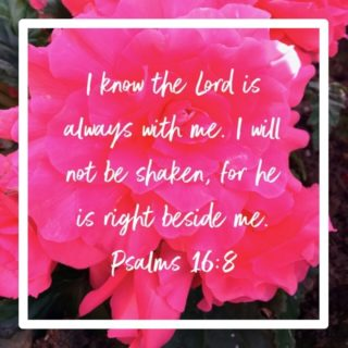 I know the Lord is always with me. I will not be shaken, for he is right beside me.  Psalms 16:8  I needed to hear this today, how about you?  Subscribe to Journey 2 Grateful: tinyurl.com/J2Gsub